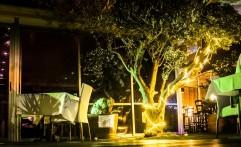 המסעדה שלנו – דוגמה מספר 20